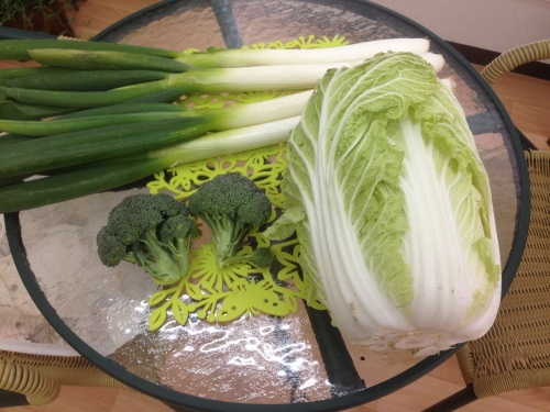 川内産の立派なお野菜です